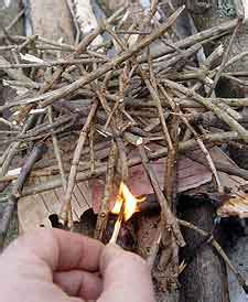 Detox From Kindling by Kindling In Withdrawal Addiction Helper