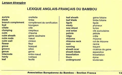 vocabulaire thmatique anglais franais vocabulaire anglais fran 231 ais relatif au bambou aeb france