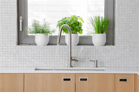 make your kitchen more eco friendly wlrn 15 simple ways to make your kitchen more eco friendly