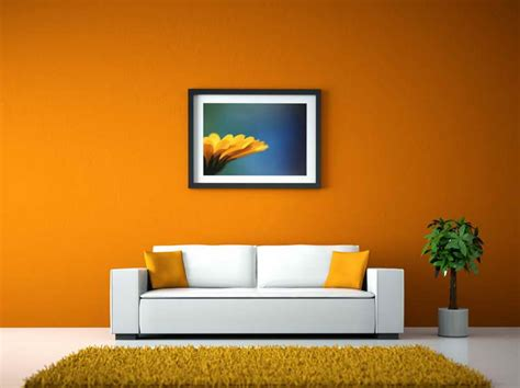 Best Wall Colors Living Room   Interior Designs, Architectures and Ideas   InteriorsExplorer.com