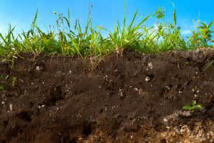soil erosion could cause food crisis expert warns topsoil