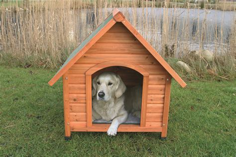 puppy in kennel natura wooden kennel
