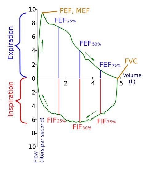 flow pattern meaning spirometry wikipedia