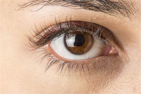 eye color brown what to about this amazing eye color