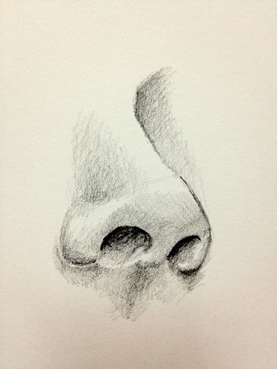Sketches Nose by How To Draw A Nose