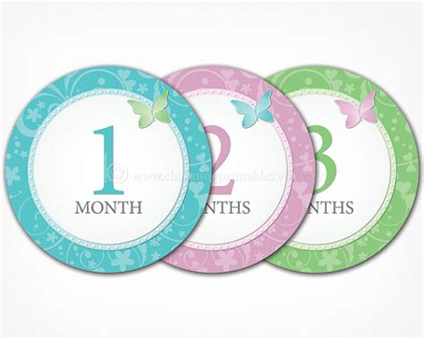 printable month numbers for baby butterfly baby month stickers for girls printable diy