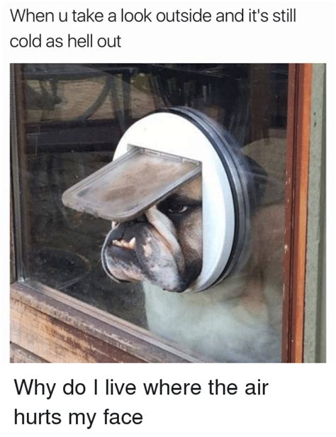 Why I Am Taking The Photos by 25 Best Memes About The Air Hurts My The Air Hurts