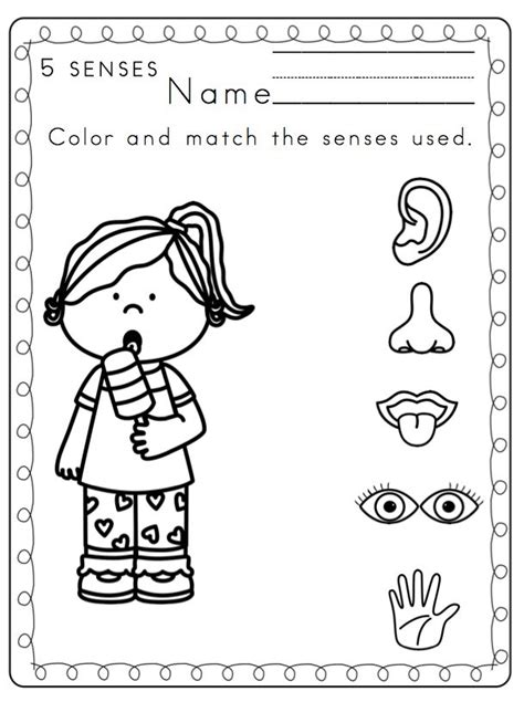 greatest hits an coloring book with our 50 best coloring pages gift for coloring book fans books 236 best the five senses images on preschool