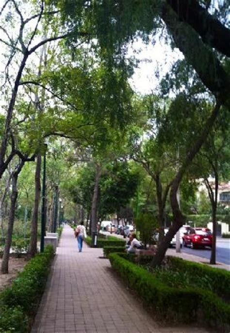 polanco s lincoln park picture of polanco mexico city