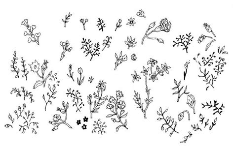 doodle plants 301 moved permanently