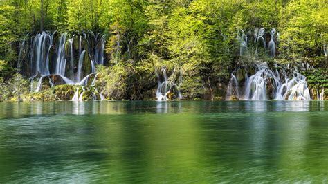 imagenes de naturaleza verdes green water landscapes nature trees white forests wonder
