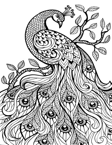 Animal Coloring Pages For Adults Bestofcoloring Com Printable Coloring Pages Adults