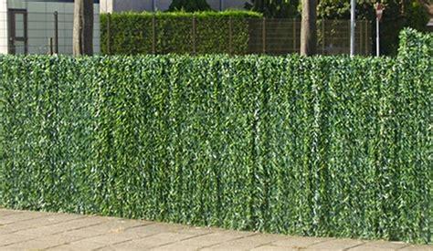mag een meeple op een tuin kunsthaag info prijs advies soorten hagen voorbeelden