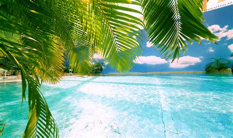 tropical islands is europe s largest tropical holiday world