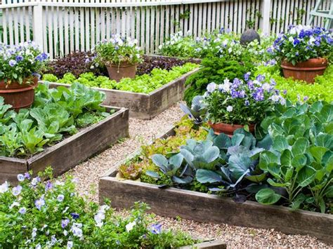 should i plant my vegetable garden in raised beds hgtv