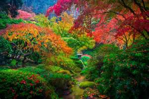 Canada State Flower - top 10 wonderful japanese gardens places to see in your
