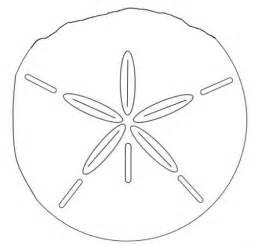 sand dollar template printable animal facts and coloring pages