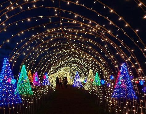 free light shows and other christmas activities for the