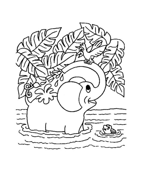 jungle coloring pages coloring kids