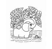 Learning Years Animal Coloring Pages  Elephant