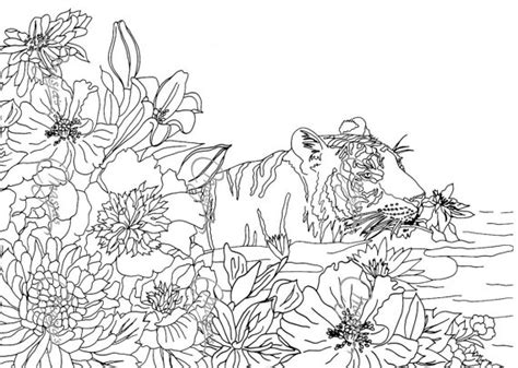 coloring pages for adults nature items similar to masja s tiger coloring page on
