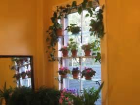 Indoor Window Sill Plant Shelf Steps To A Window Garden