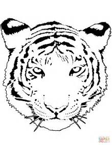tiger color tiger portrait coloring page free printable coloring pages