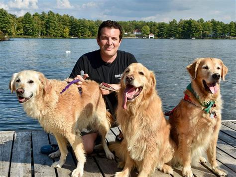 canadian golden retriever adoption service inc viamede resort in kawartha featured in the rick mercer report kawarthanow