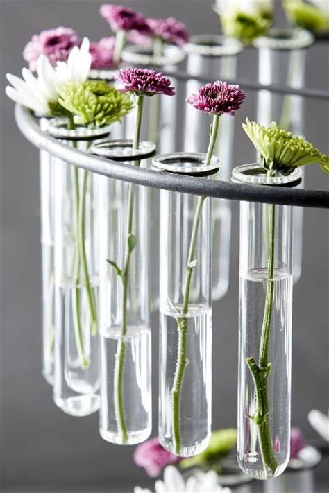 Laboratory Flower Vases by 17 Best Ideas About Green Chemistry On Glitter Projects For Cool Science And