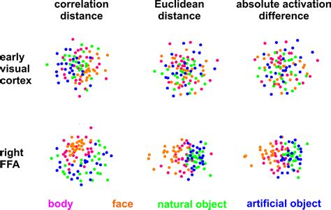 pattern theory based interpretation of activities frontiers representational similarity analysis