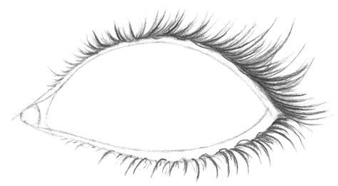 Drawing Eyelashes by Eye Eyelash Pencil And In Color Eye Eyelash