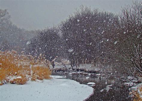 Snow Flurries Weather | snow flurry by pjpix photo weather underground