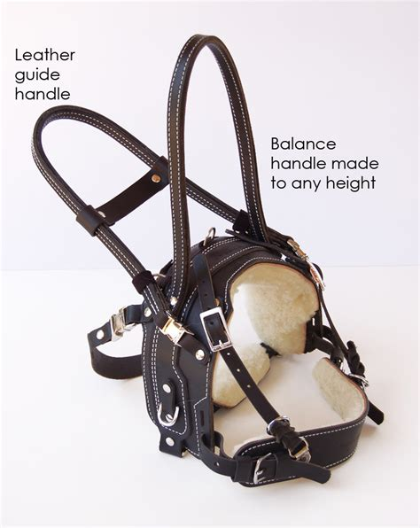 balance harness no pull walking harness get free image about wiring diagram