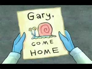 gary come home gary come home