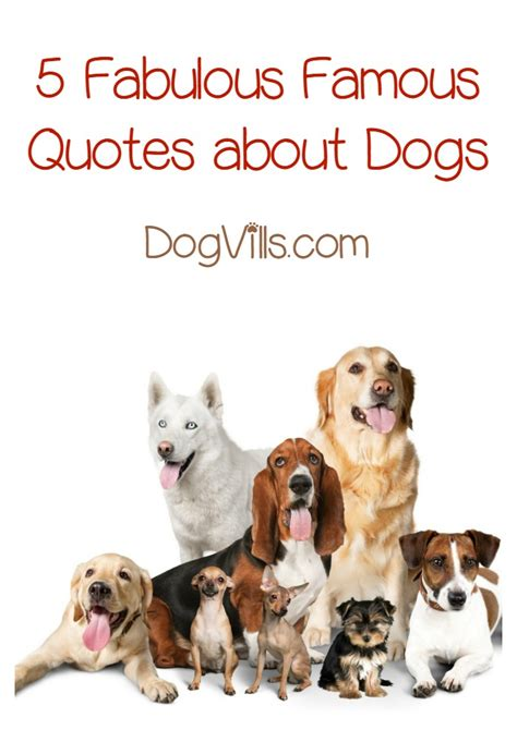 quotes about puppies quotes about dogs dogvills