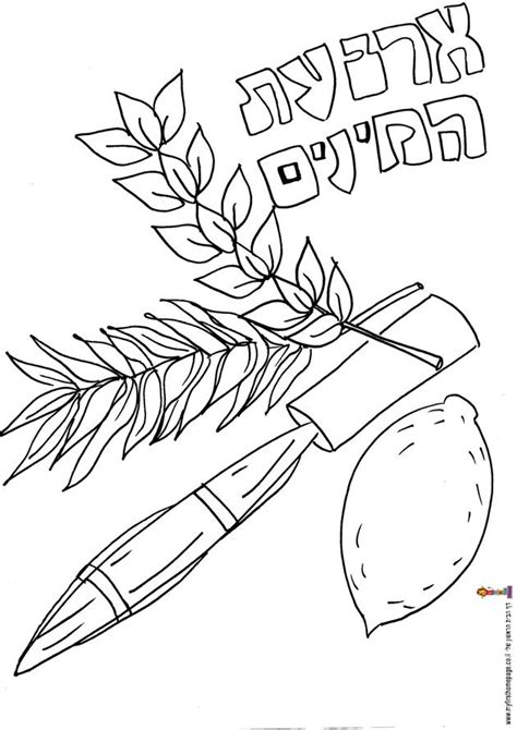 sukkot coloring pages sukkah coloring pages coloring home