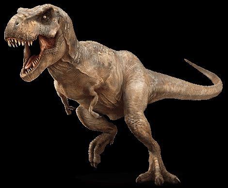 jurassic world photos: the t rex returns! movieweb