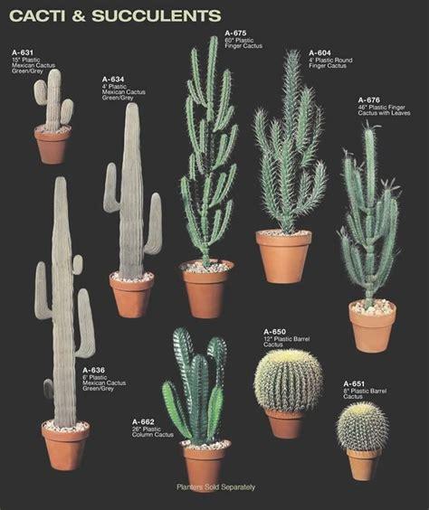 happy national indoor plant week images