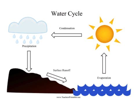 Process Of Precipitation And Its Application In Pharmacy Water Cycle Chart