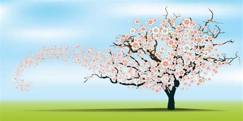 testo canzone fiori rosa fiori di pesco rami di pesco i testi di ada negri sulla primavera in