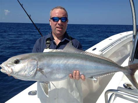 boat bottom cleaning key west fishing calendar key west booya key west fishing charters