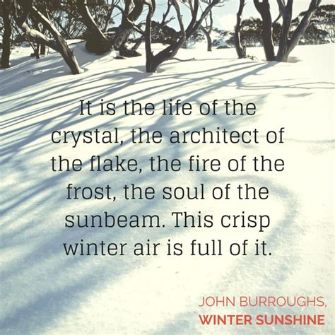 winter and quotes 25 great ideas about winter quotes on