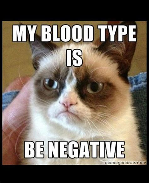 Grumpy Memes - my blood type grumpy cat meme