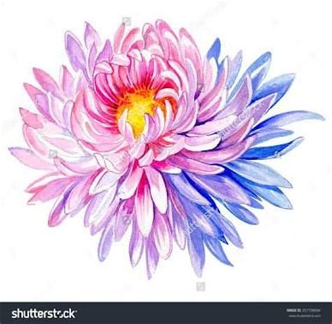 november flower tattoo best 25 chrysanthemum ideas on