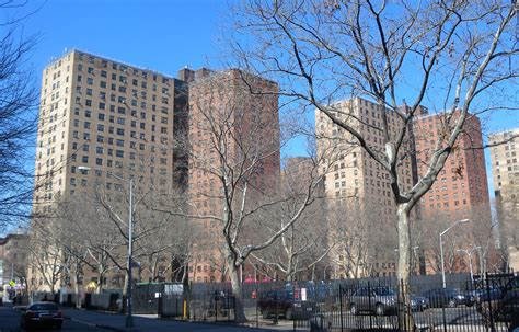 section 8 nycha new york city housing authority