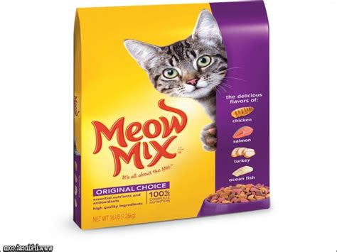 best food brands 2017 vital pieces of best kitten food brands irkincat