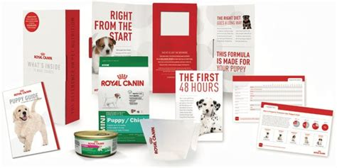 puppy kit royal canin puppy kit rocky mountain biewer terriers