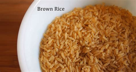 can dogs rice can dogs eat brown rice pets world