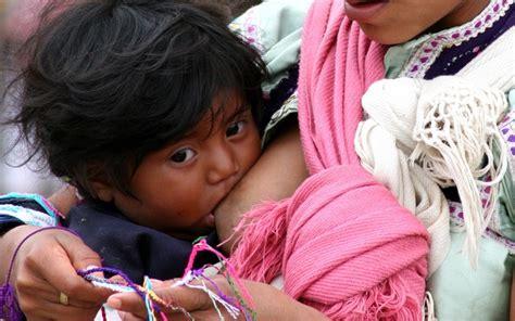 imagenes de niños indigenas jugando en chiapas mujeres ind 237 genas extienden lactancia materna