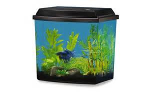 Betta Fish Aquarium and Tank Decorations   PetSmart National
